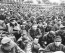Es war ein Holocaust, was die Amerikaner den Deutschenantaten