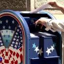 USA-Wahlkampf: Pannen bei Briefwahlen und wie die Internetkonzerne die Wahlenbeeinflussen