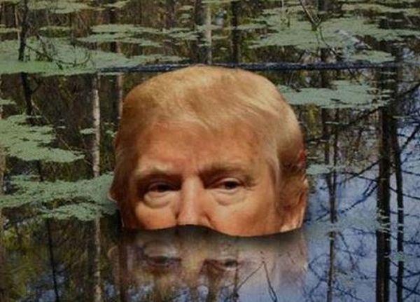 Der Sumpf verschlingt Trump