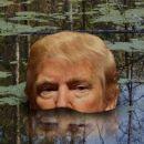Der Sumpf verschlingtTrump
