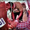 """Corona-Tragödie in Indien wird von prominenten Querdenkern geleugnet. Videos sollen angeblich gefälscht sein. Dr. Wolfgang Wodarg und Ken Jebsen kommentieren vor dem Corona-Ausschuss die Behauptungen eines Deutschen, der aus Indien über eine komplette """"Inszenierung""""berichtet."""