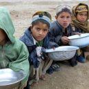 Warum EU-Sanktionen gegen Weißrussland zur weltweiten Verknappung von Lebensmittelnführen