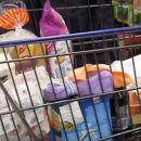 Ungebremster Preisanstieg: Geringverdiener und Bedürftige können sich immer wenigerleisten